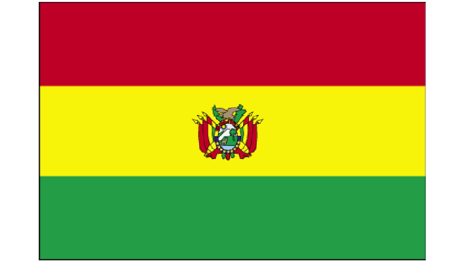 Flag for Bolivia
