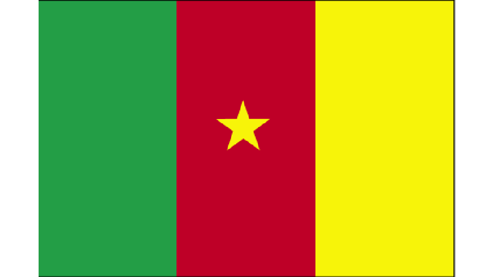 Flag for Cameroon