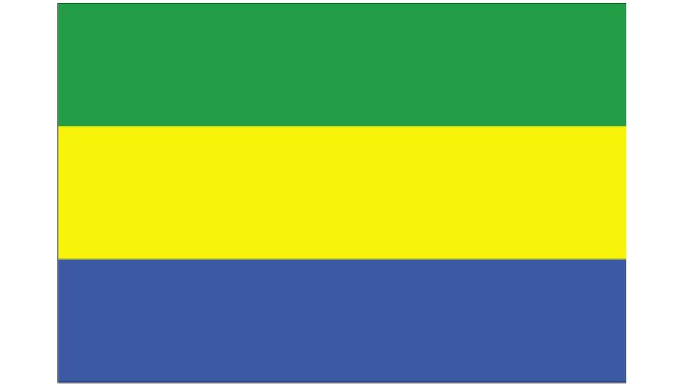 Flag for Gabon