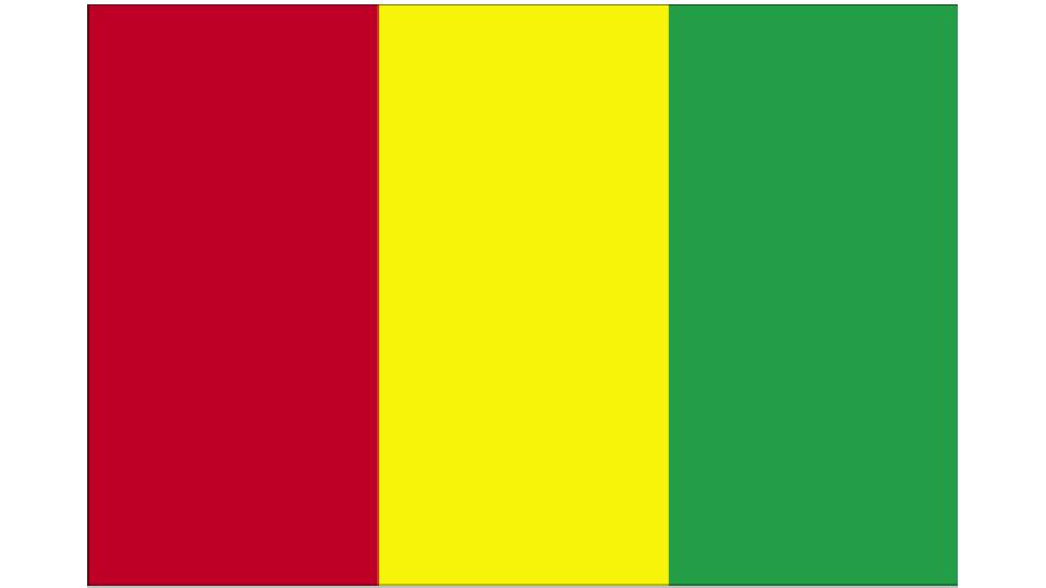 Flag for Guinea