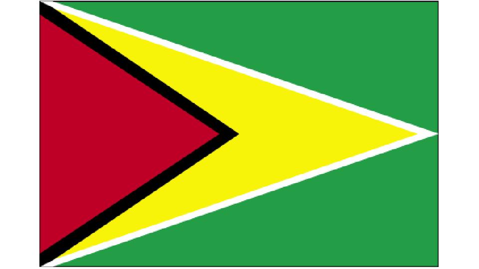 Flag for Guyana