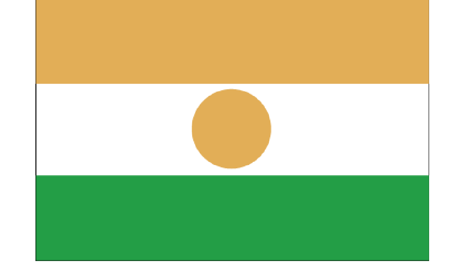Flag for Niger