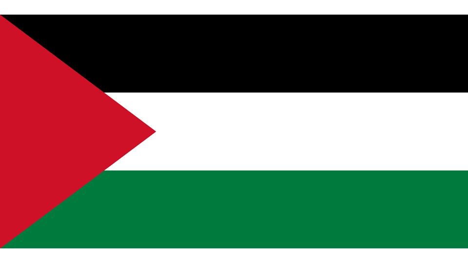 Flag for Palestine