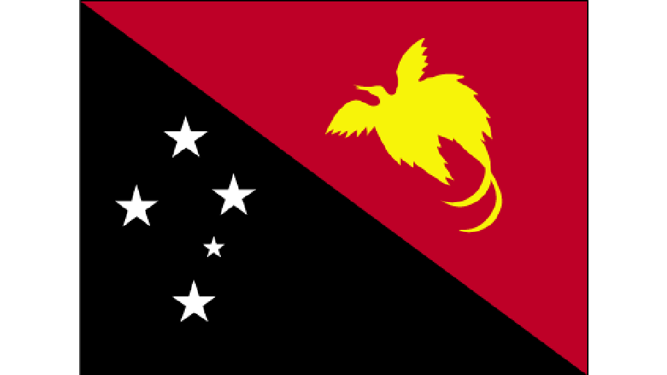 Flag for Papua New Guinea