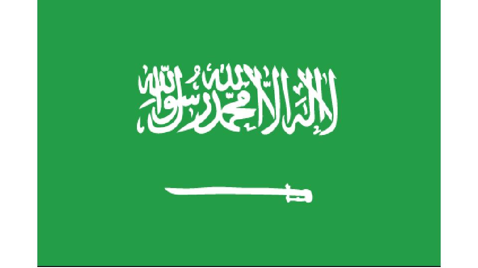 Flag for Saudi Arabia