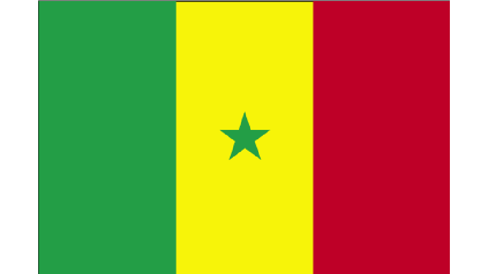 Flag for Senegal