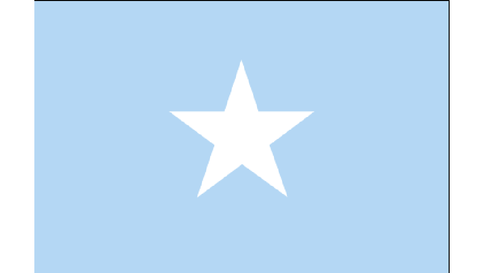 Flag for Somalia