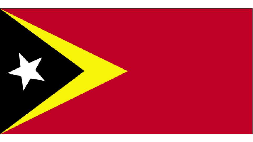 Flag for Timor Leste