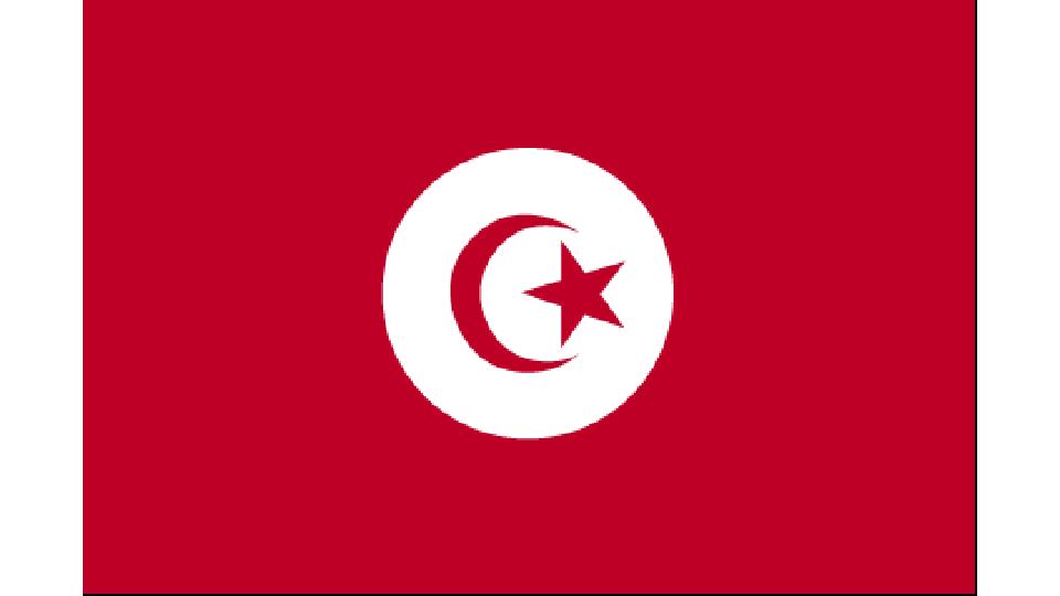 Flag for Tunisia