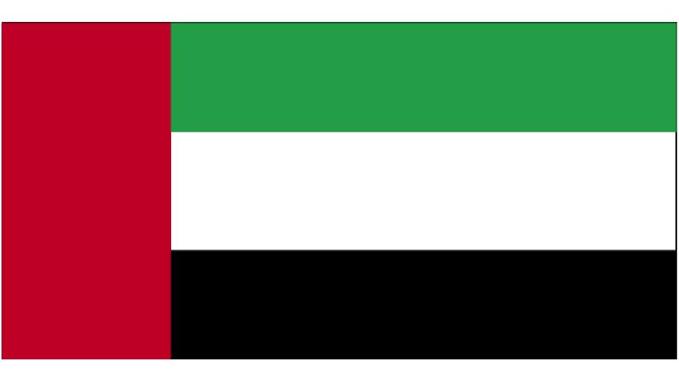 Flag for United Arab Emirates