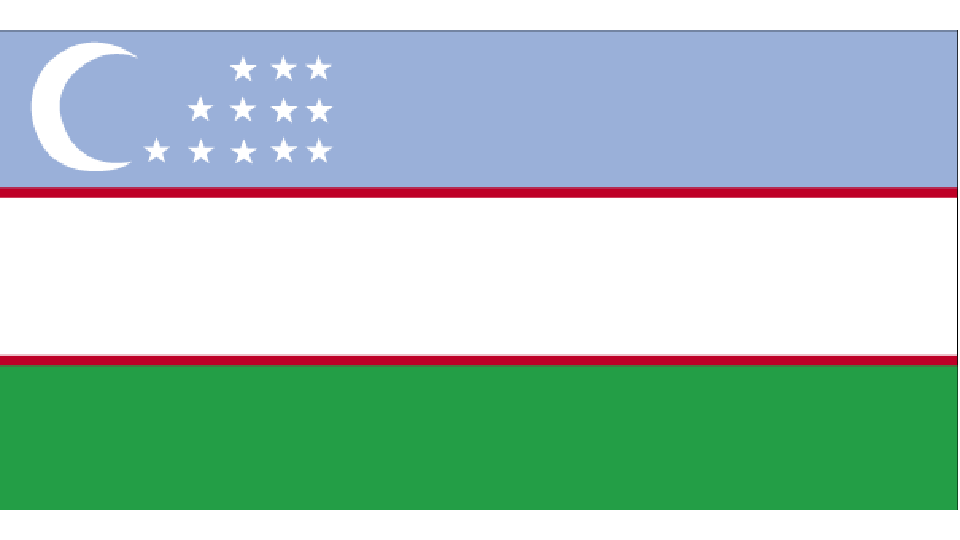 Flag for Uzbekistan