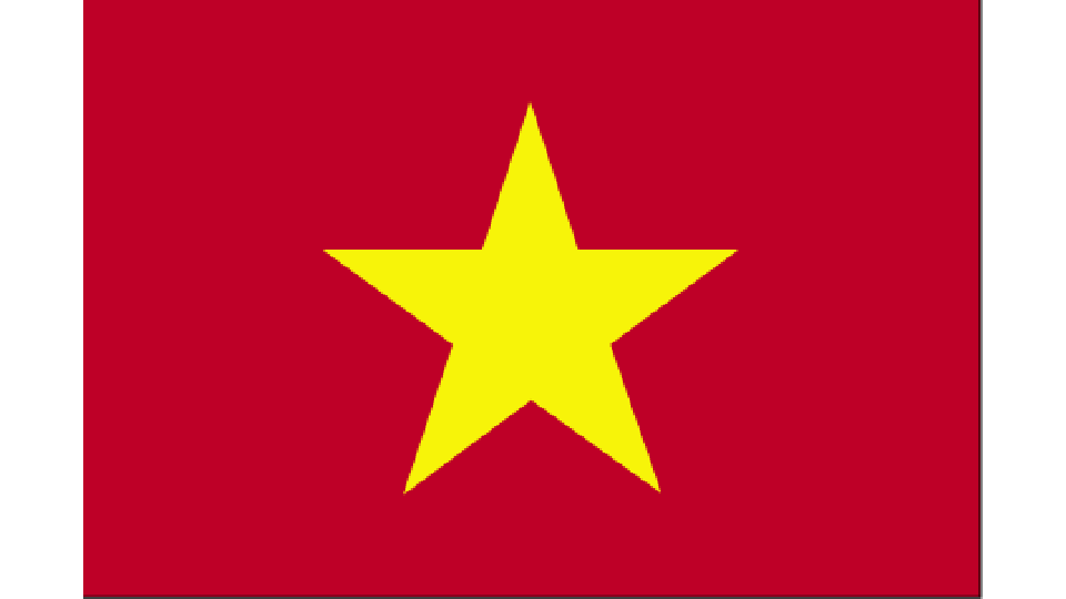 Flag for Vietnam
