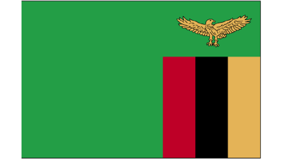 Flag for Zambia